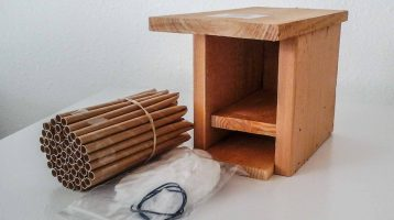 Western Red Cedar Mason Bee Starter Kit (bees sold separately)